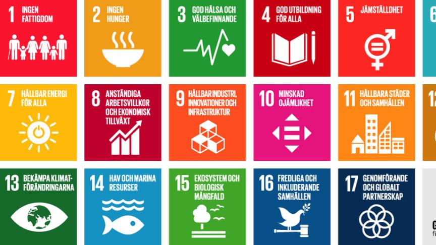 Hållbarhetsdagen 2019 – för dig som vill veta mer om hållbarhetsforskningen vid Högskolan i Halmstad
