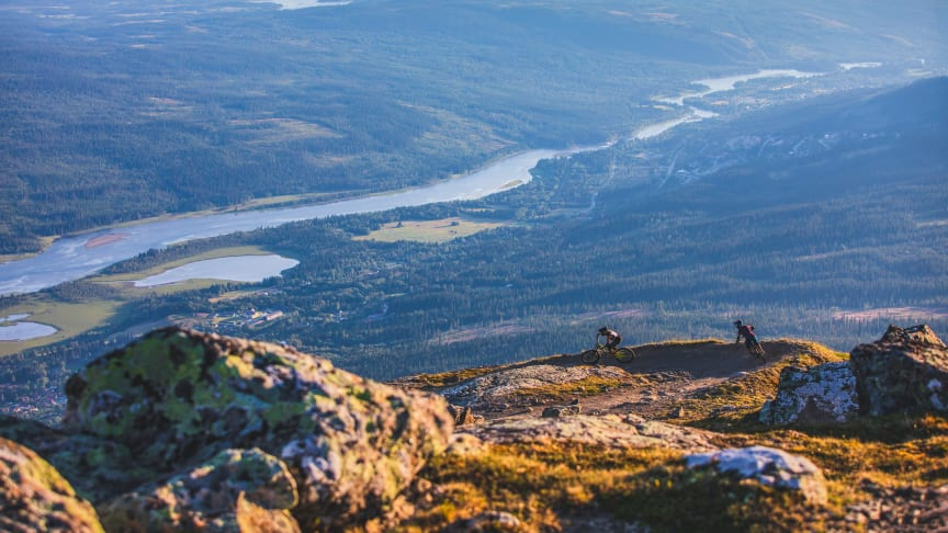 Down Hill cykling Åre. Foto: Niclas Vestefjell