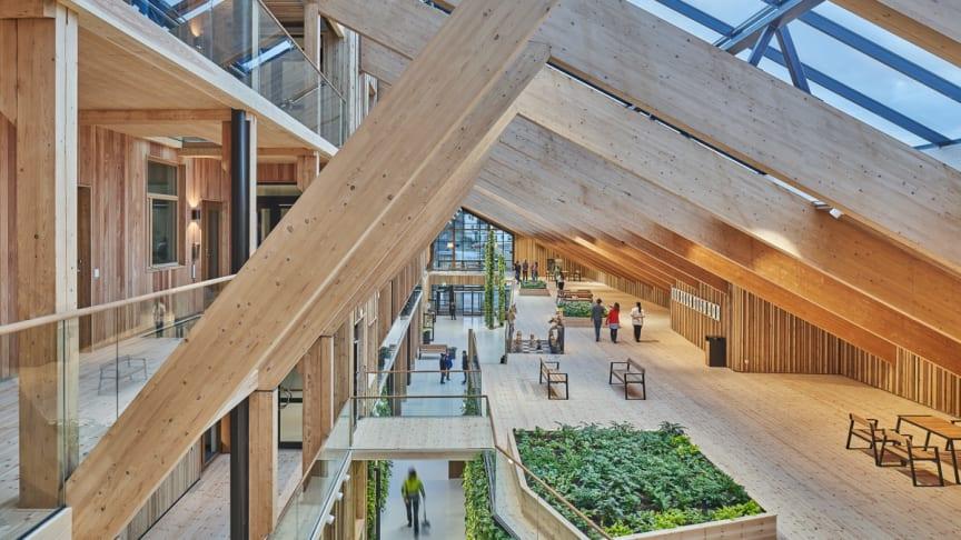 De två anläggningarna, bostadshuset och vårdcentralen, är separerade till två byggnader och även fastigheter men sammanlänkade genom den gemensamma glasgallerian, Sinnenas galleria, och det gröna taket.
