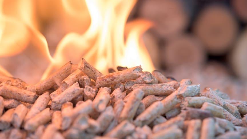 Biomasse importeret fra USA er problematisk, men alligevel afbrænder Aarhus amerikanske træpiller af for energi.