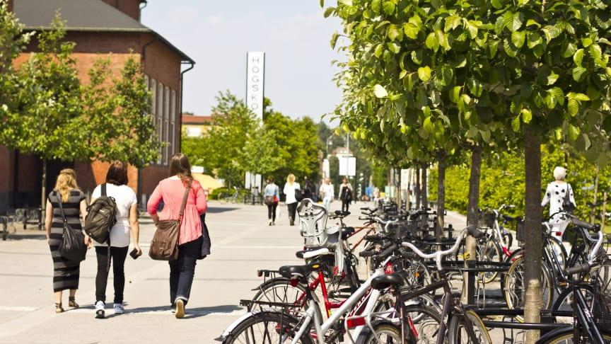 Högskolan Väst utökar med fler sommarkurser och basår
