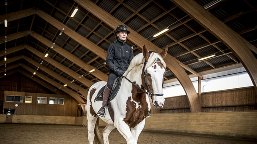 Med ren utrustning mår hästarna bäst