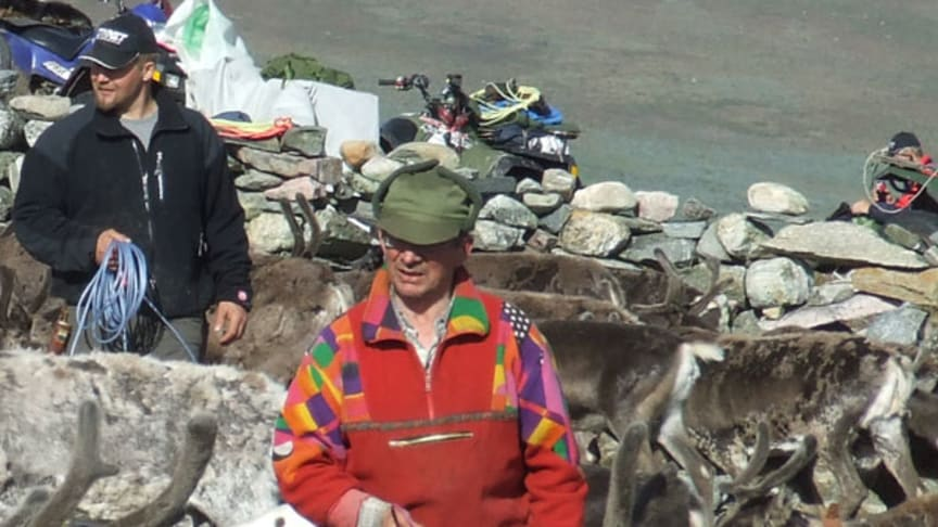 Reindeer husbandry as a resource for the society