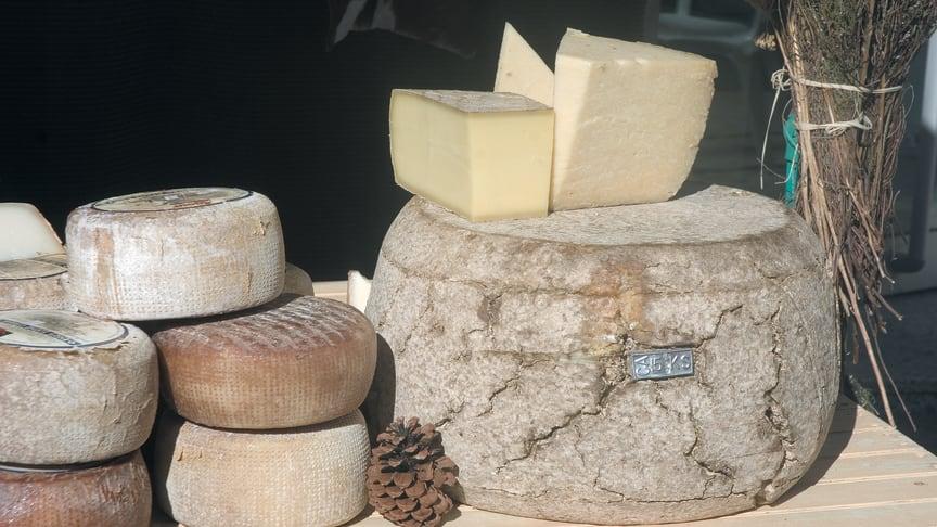 Cataluña, destino para los amantes del queso