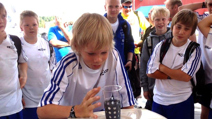 Mjölkhävartävling vid Piteå Summer Games