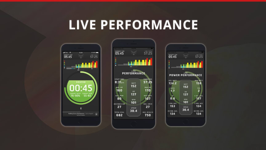 Performance-driven? Your data is at your fingertips!