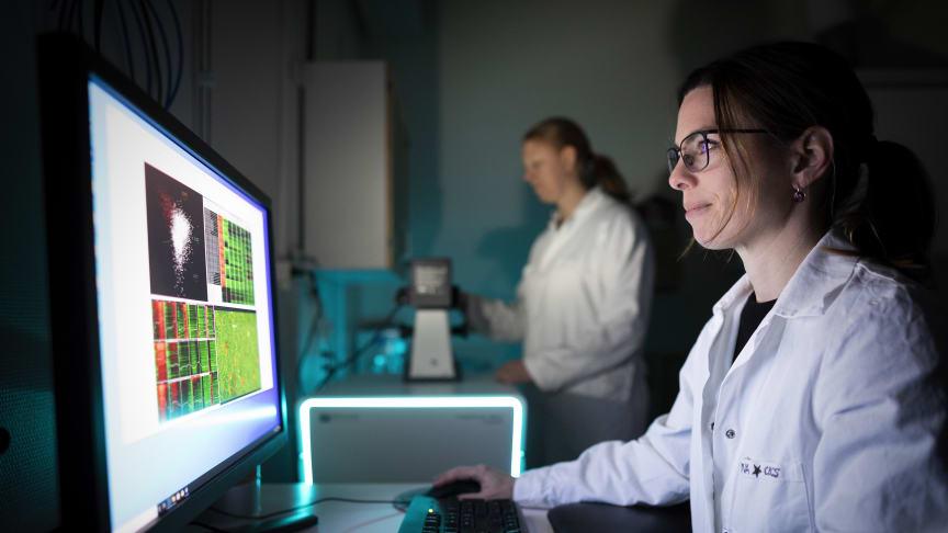 Första forskningsingenjör Stina Berglund Fick, Chemical Biology Consortium Sweden, CBCS. Foto: Mikael Wallerstedt