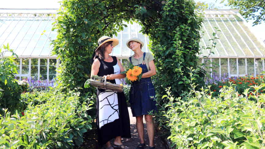 Trädgårdsinspiratörerna Lydia Jeppsson och Annika Christensen har skapat den nya utställningen Odla hälsa på Sofiero. Foto: Johanna Kärnstrand.