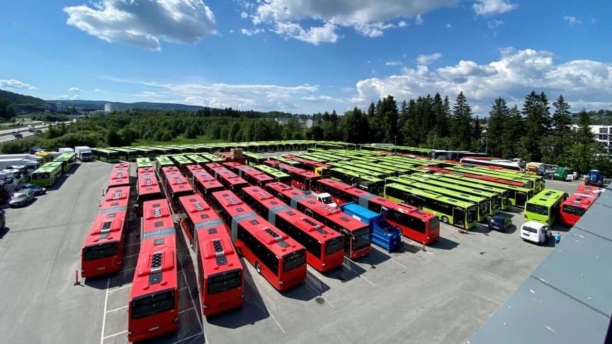 Busser_Oslo_1.jpg