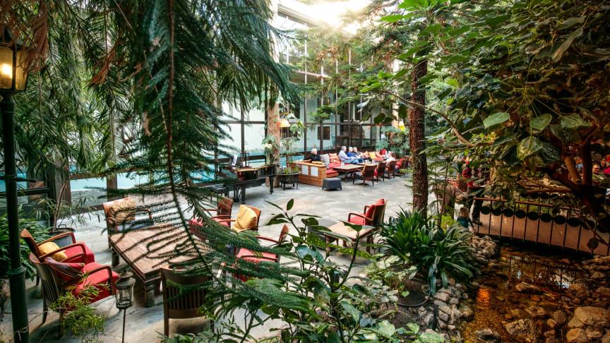 Vinterträdgården på Storhogna Högfjällshotell & Spa i Vemdalen