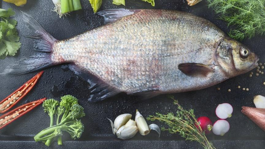 Braxenfärsen görs på en tidigare outnyttjad resurs som är en bifångst till gösfisket och tidigare släpptes tillbaka i sjön.
