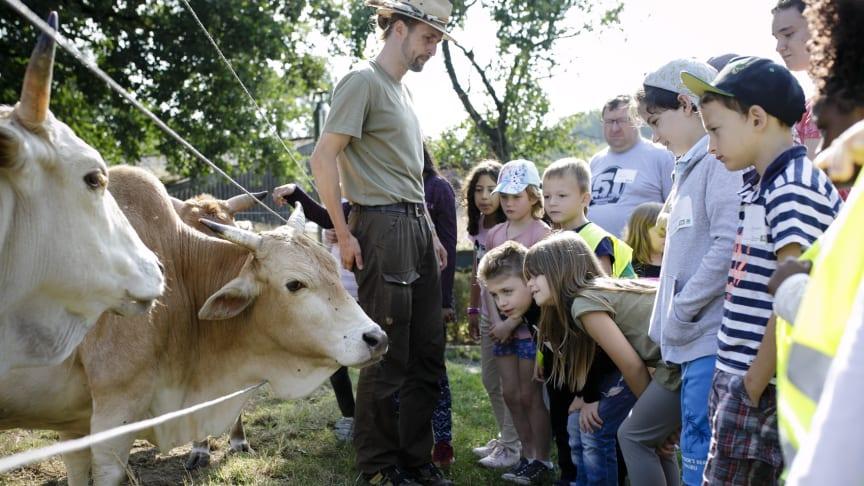 Ab Juli können rund 750 Kinder im Alter von sechs bis zehn Jahren in zehn deutschen Städten auf Naturlandhöfen selbst mit anpacken.