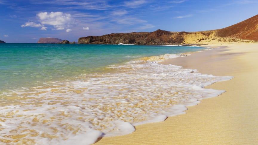 En dag med sol och bad på Playa de las Conchas på ön La Graciosa är svårt att motstå. Foto: Canary Islands Tourism.