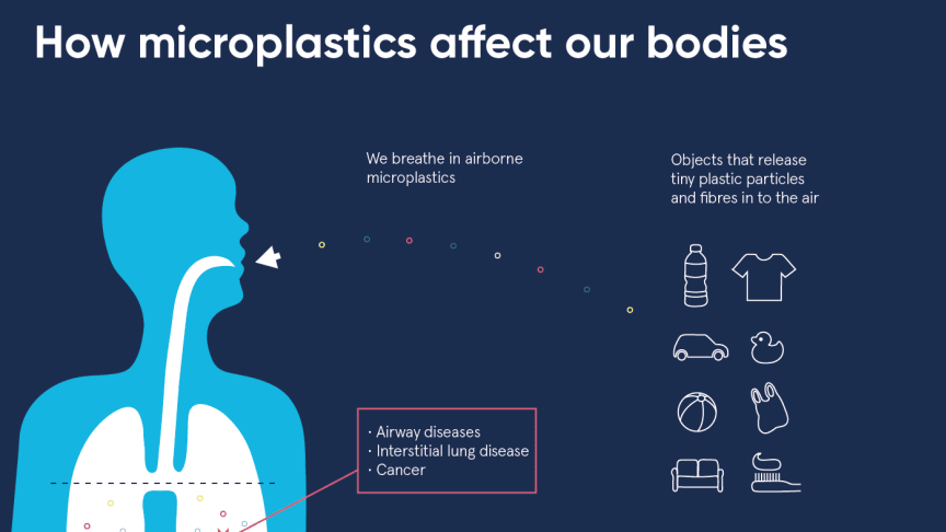How microplastics affect our bodies