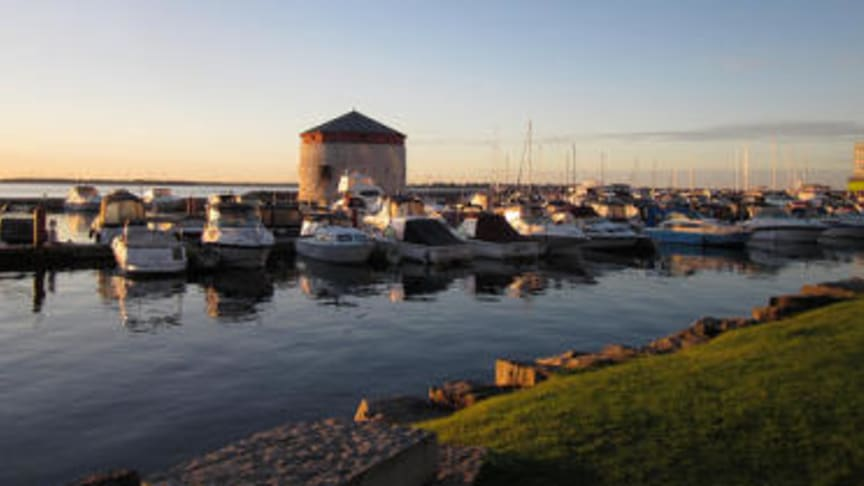 Canadian developer Trillium loses initial offshore ban appeal