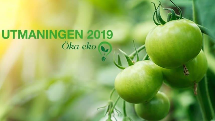 Martin & Servera utmanar branschen i hållbarhet. Utmaningen 2019 handlar om att Öka Eko!