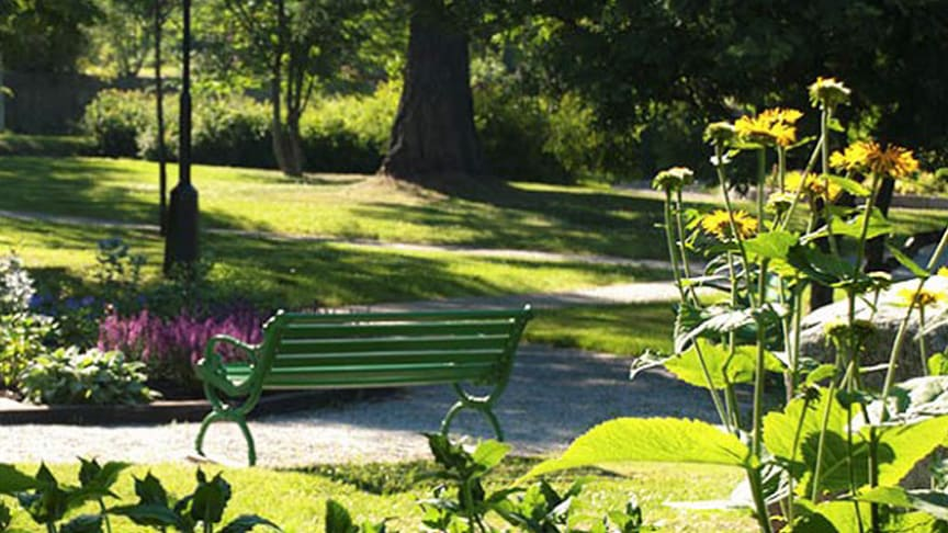 Belonaparken - Piteås äldsta park med anor från 1800-talet.  Foto_ Piteå kommun