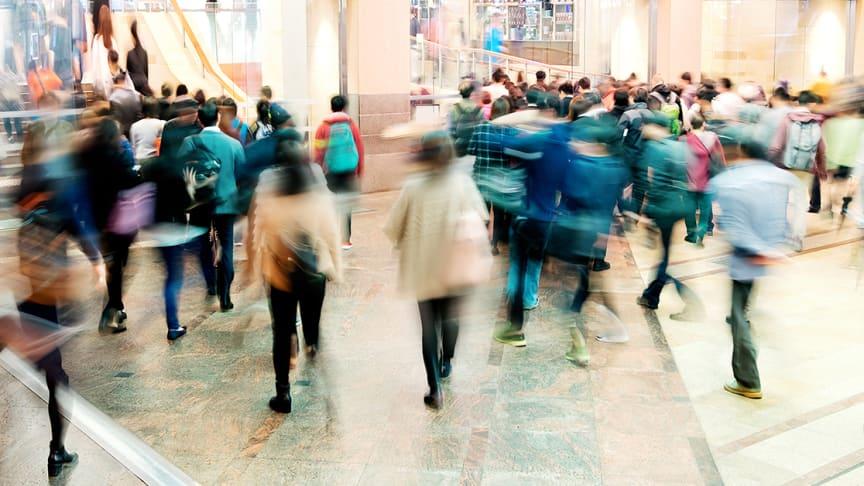 Svensk startup säkrar 3,1 miljoner för utveckling av AI inom fysisk handel