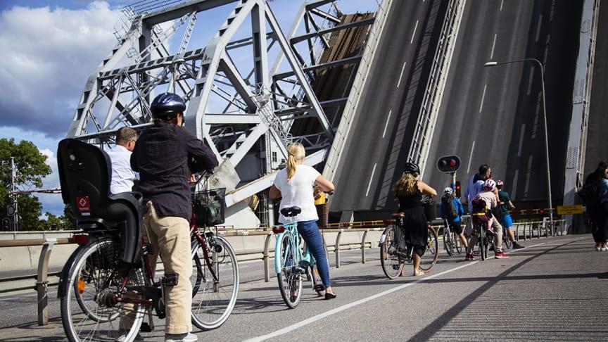 Allt fler cyklar i Stockholm trots bristande cykelinfrastruktur. Foto: Johanna Wolff