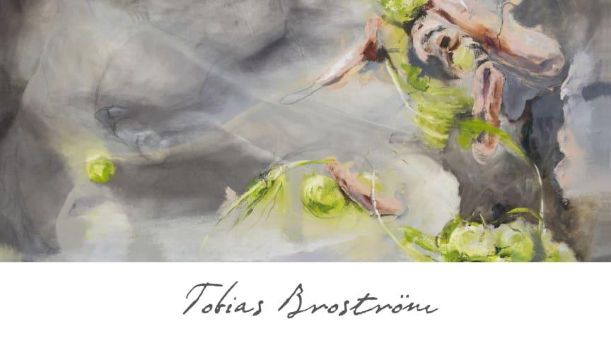 Tobias Broström; Orchestral Works SCD1165