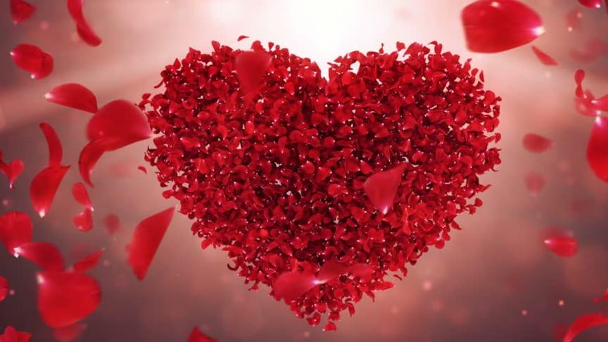 Skriv något vackert om kärlek och vinn en vigsel