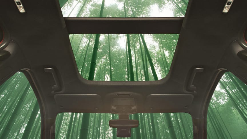 Hvad er super stærkt, hurtigt voksende og muligvis en bestanddel af din næste bil?