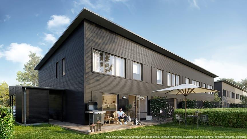 Byggnadsfirman Viktor Hanson förvärvar mark i Vega, Haninge kommun.