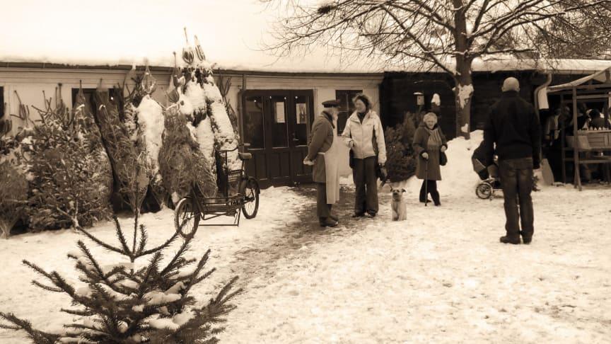 Lützhøfts Købmandsgård slår porten op til årets hyggeligste julemarked den 7. december. Foto: ROMU