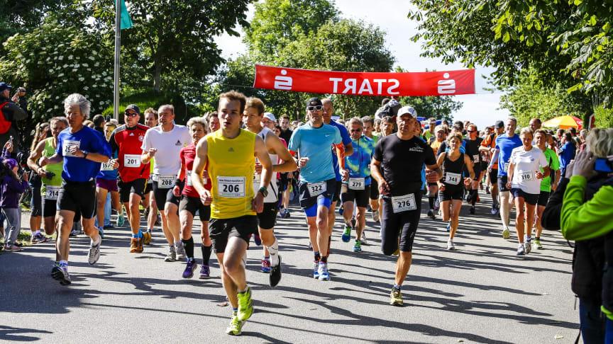 Fehmarn Marathon © Fehmarn-Echo