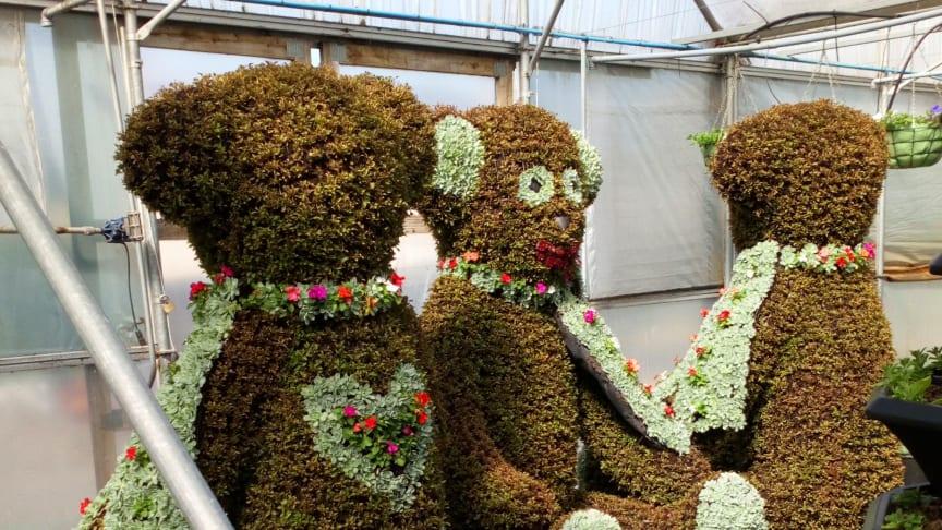 Bears2020.jpg