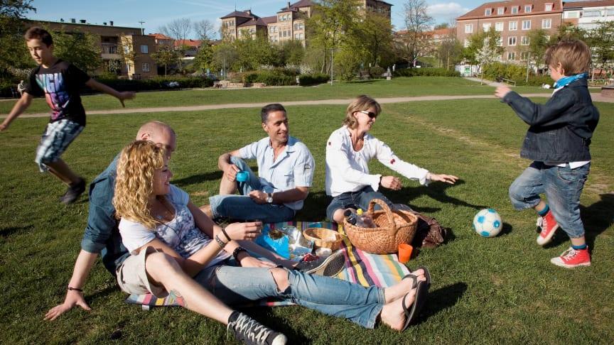 Med några enkla miljöåtgärder kan sommaren njutas med extra gott samvete.