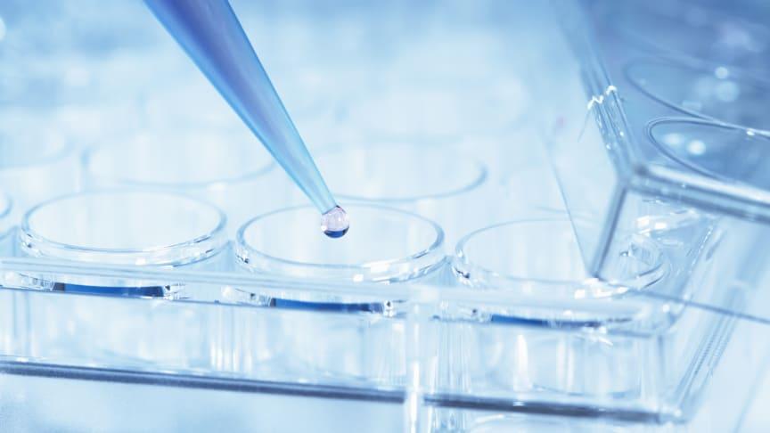 Genterapi vid Duchennes muskeldystrofi - ny studie från Pfizer