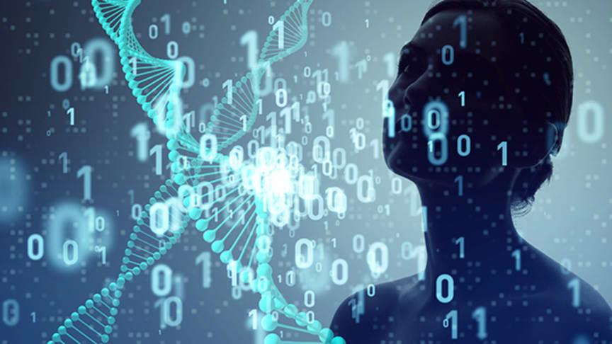 Artificiella neurala nätverk kan användas för att hitta mönster i stora mängder data (genrebild).