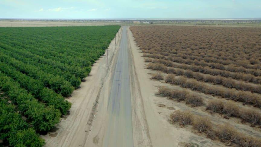 """I dokumentärfilmen """"Maktspelet om Kaliforniens vatten"""" samt miniserien """"Vattenkrisen"""" uppmärksammar National Geographic maktspelet bakom Kaliforniens och världens vatten."""
