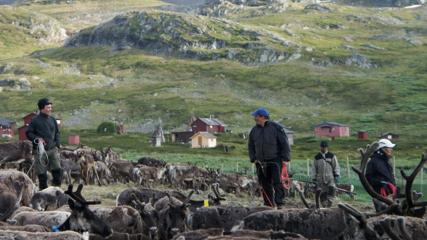 Conference focusing on climate, indigenous peoples and the Arctic