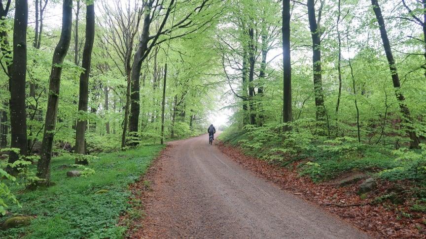 En naturupplevelse i Skåne i en kombination av cykel, natur, lokal mat & kunskap.
