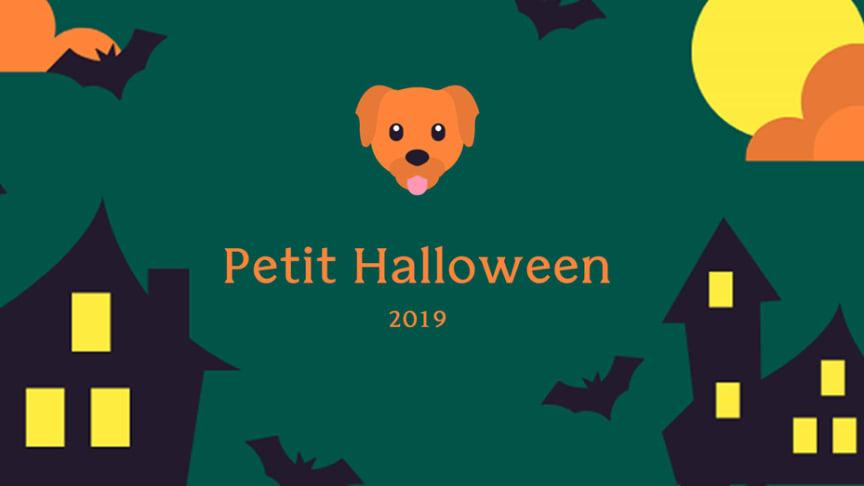 Sveriges första Halloween-promenad för hundar - till förmån för Hundar Utan Hem
