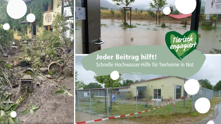"""Fressnapf-Initiative """"Tierisch engagiert"""" richtet Spendenfonds ein und zahlt initial 25.000 EUR ein - Fotomontage: Fressnapf"""