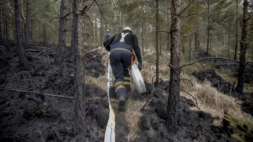 Inför sommarens skogsbränder har MSB förstärkt beredskapen på flera punkter.