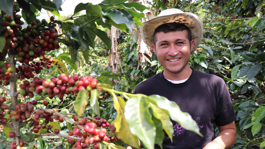 """Now I am a passionate coffee farmer"""