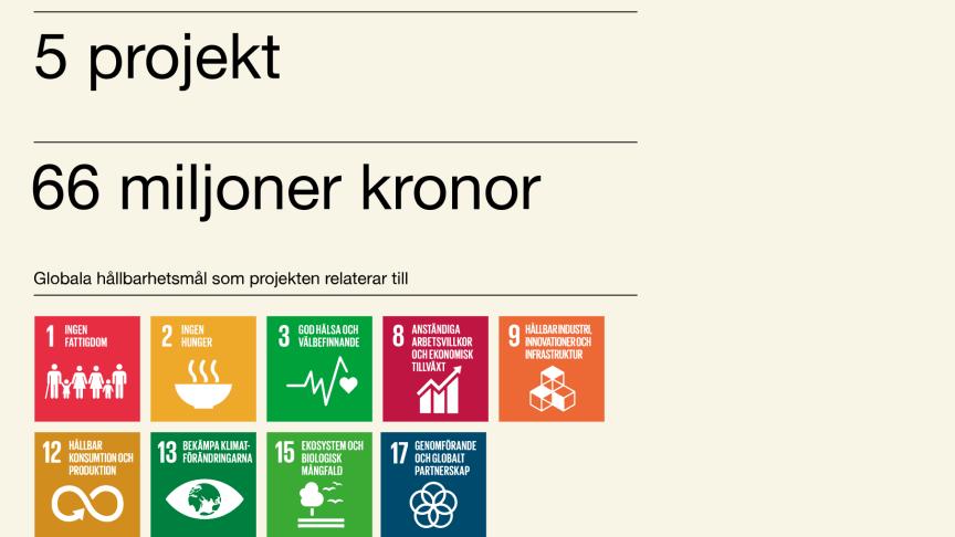 66 miljoner kronor till digital transformation av livsmedelssystemet