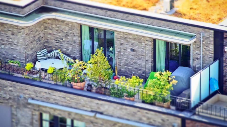 "Trendthema ""City Gardening"" – StadtgärtnerInnen im Fokus. Foto: Pixabay"