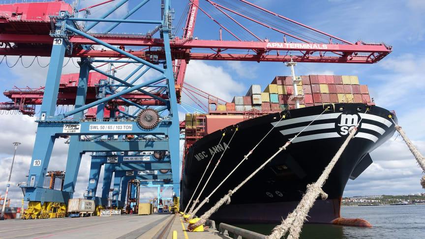 Flera rederier ökar nu flödet av tomma container till Göteborg.