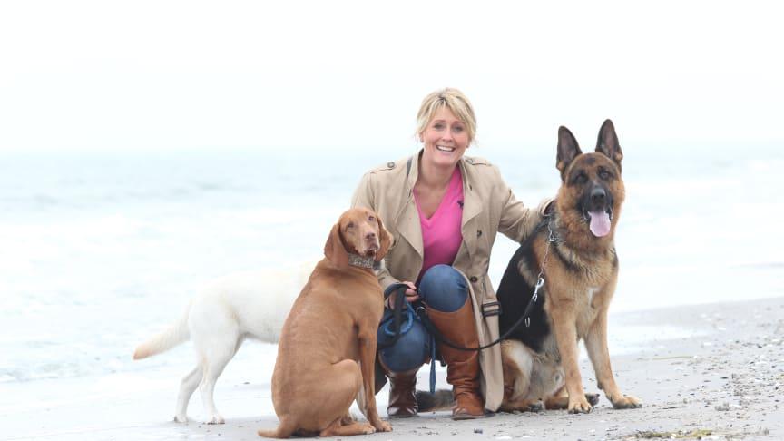 Hunde kan være med til at sænke stressniveauet på kontoret ifølge Lise Lotte Christensen, hundeadfærdskonsulent hos Dansk Kennel Klub igennem 20 år.
