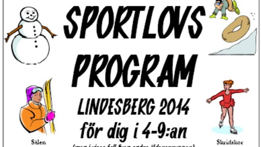 Inte bara sport på Lindesbergs sportlov