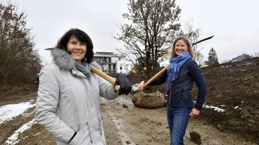 Marlies Mirbeth (li.), Vorstandsmitglied der Stadtsparkasse München, und Stadträtin Dr. Julia Schmitt-Thiel pflanzen zusammen den ersten von 25 gespendeten Bäumen im Naherholungsgebiet Horst-Salzmann-Weg.