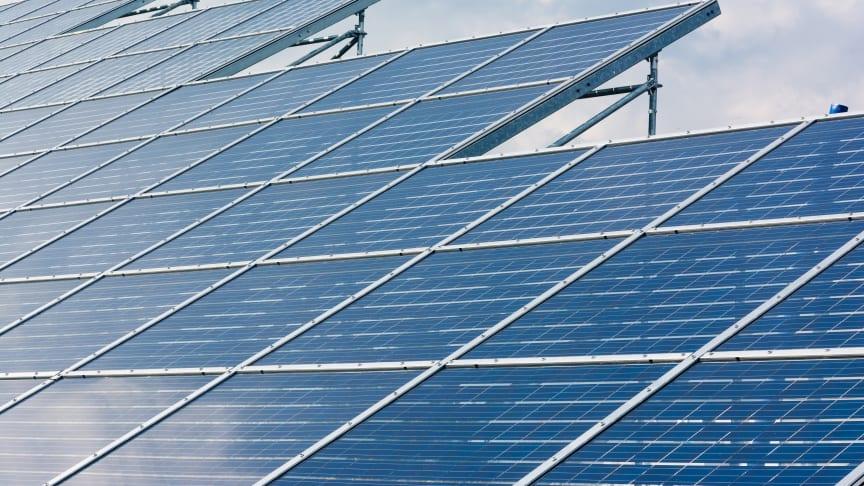 Northumbria University renewable energy expert to head up international event