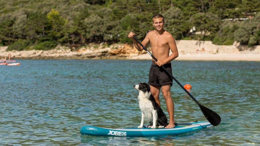Hundeexperte Lukas Pratschker gibt Tipps für den Sommer mit Hund