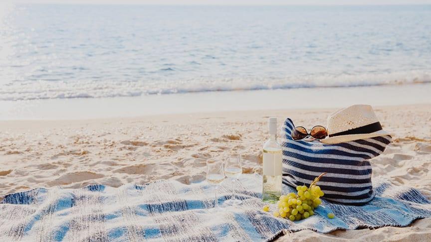 Picknick-bag står på filt på stranden.