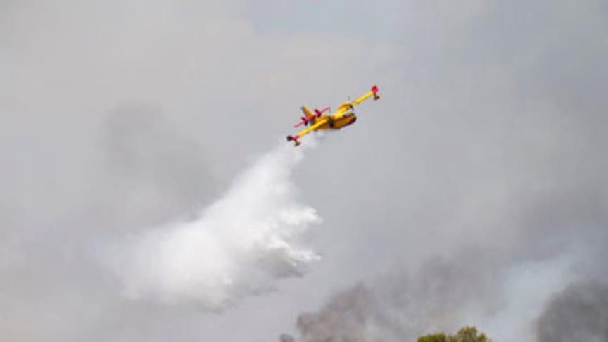 Försäkring vid skogsbrand